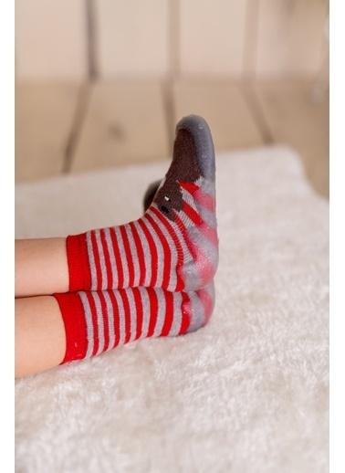 Nou Nou Ayılı Kaydırmaz Taban Çorap Panduf Kahve